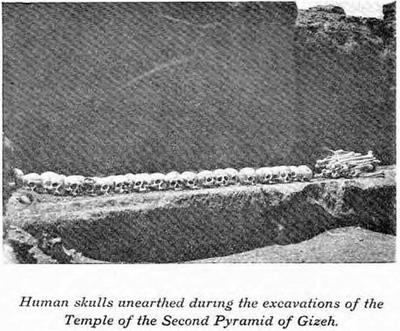 Черепа, извлеченные при раскопках заупокойного храма. Пирамида Хефрена 1909 год. Мортон Едгар.