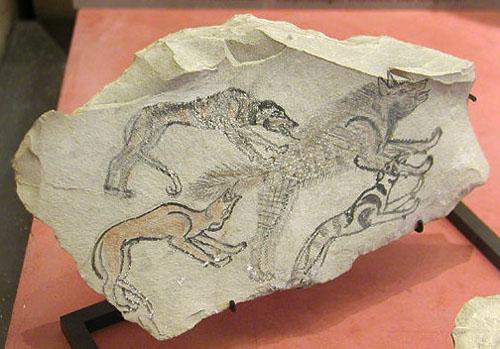 Рисунок собак, преследующих гиену. Музей в Лувре