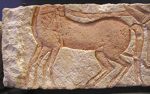 Рельеф лошади. Музей в Лувре