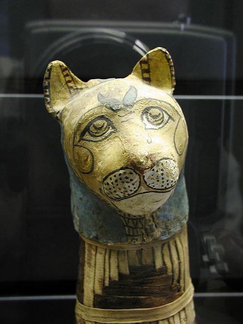 Мумия кошки. Музей в Лувре