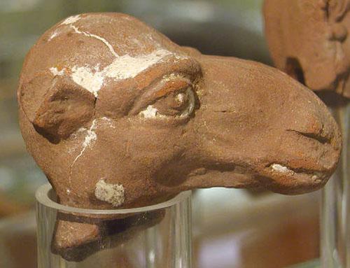 Керамическая голова верблюда. Музей Петри